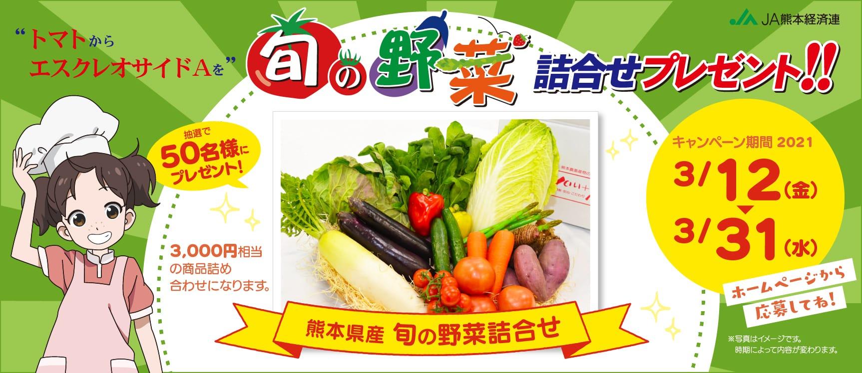 抽選で50名様にプレゼント!熊本県産旬の野菜詰め合わせ/キャンペーン期間2021年3月12日〜31日