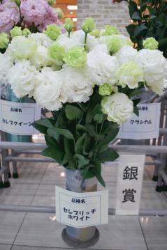 0130トルコギキョウ切花品評会銀賞.jpg