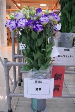 0130トルコギキョウ切花品評会銅賞.jpg